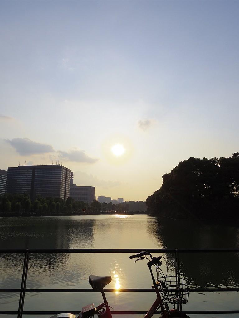 都会のど真ん中にもこんなに空が広い場所がありました……。