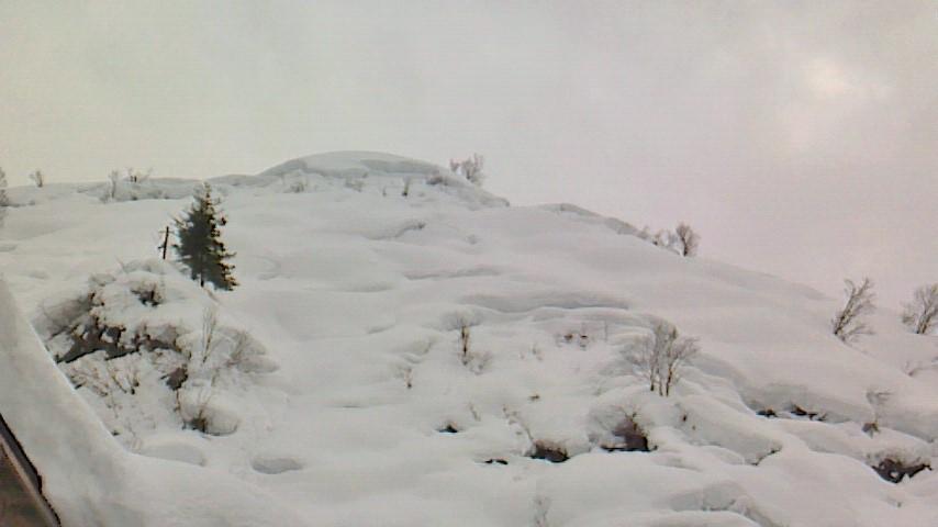 お部屋の窓から……豪雪の冬。
