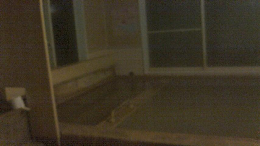 夜の女風呂。お風呂の写真はこれ1枚のみ。常に湯治や日帰りのお客さんがいらっしゃるため、写真は遠慮がちモードに・・・・・・。