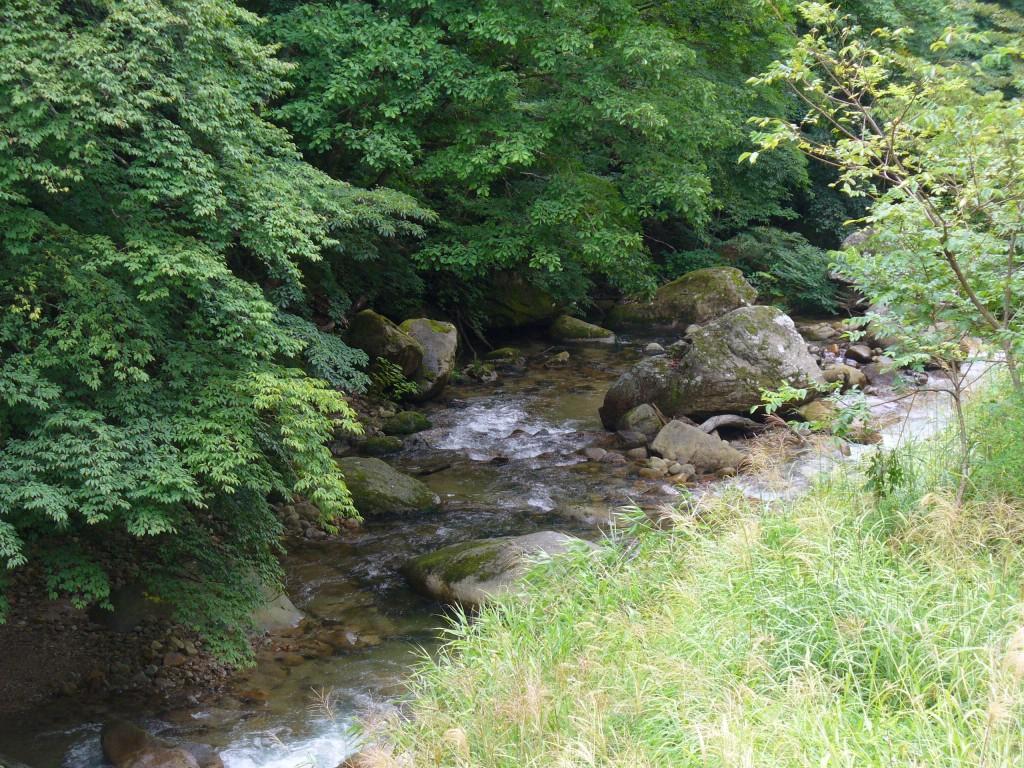 お宿の前の渓流♪