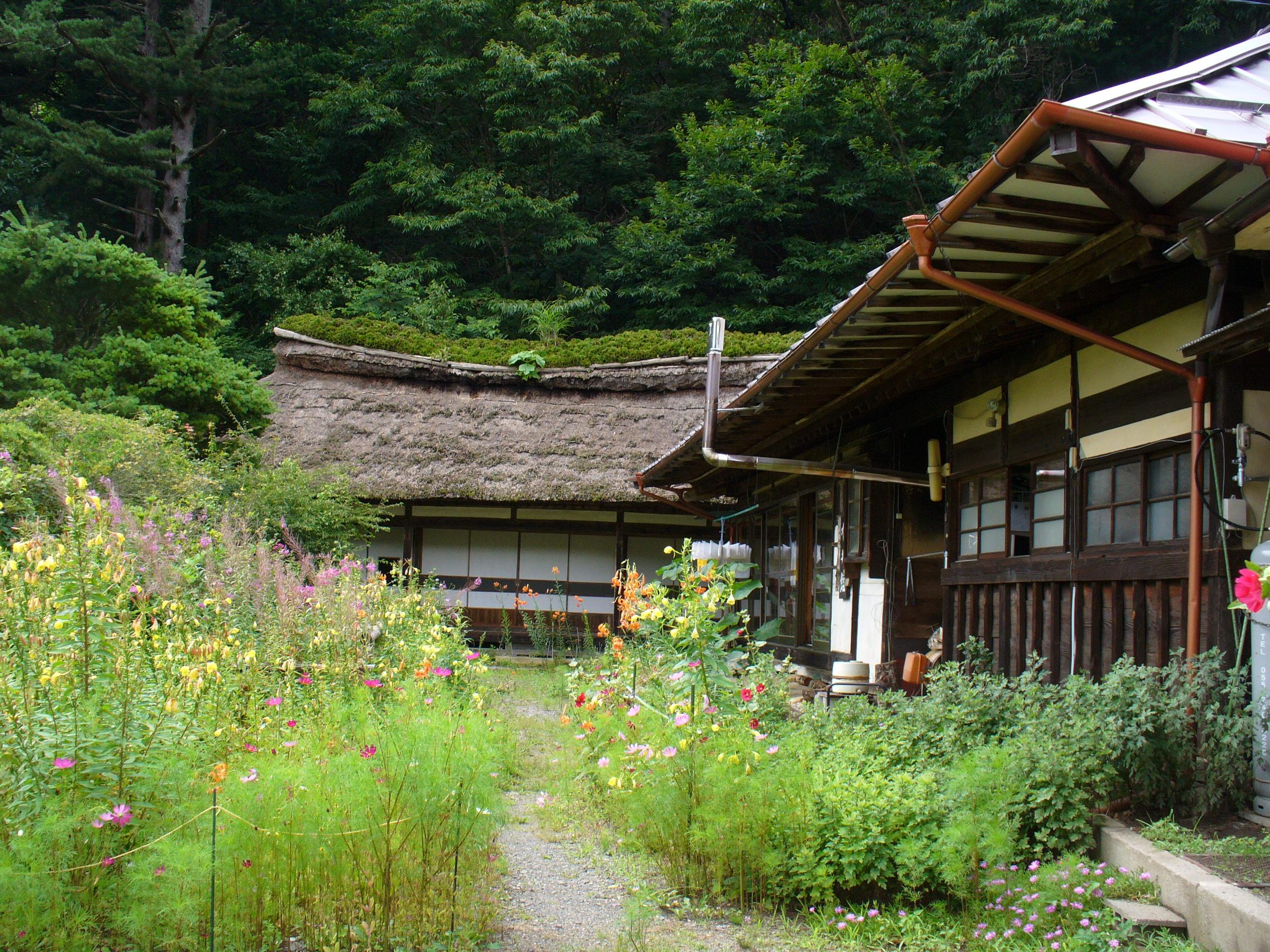 歴史的な民宿である有井館。昼には、手打ちの美味しいお蕎麦が食べられます