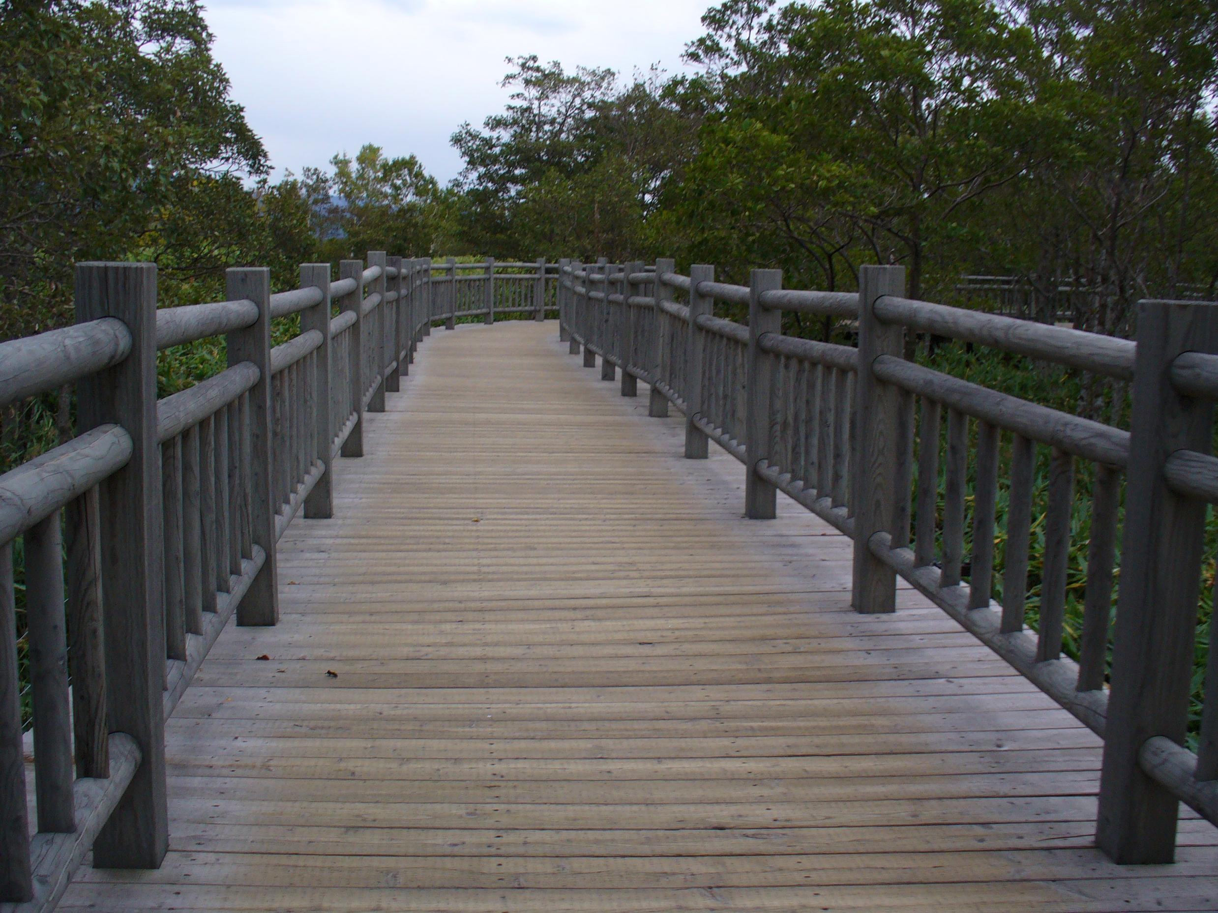 高架木道。