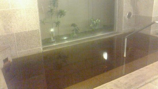 グランティアのお風呂の写真、遠慮してこれ1枚のみ……残念~