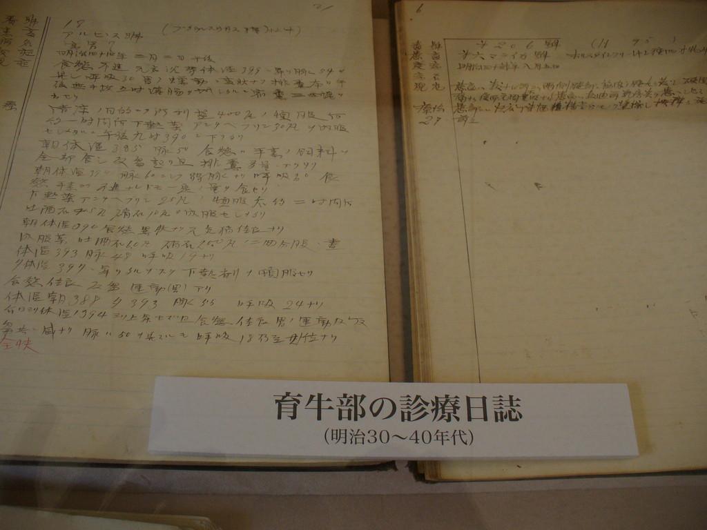 鉛筆で手書きされている、獣医さんのカルテがありました(資料館)。