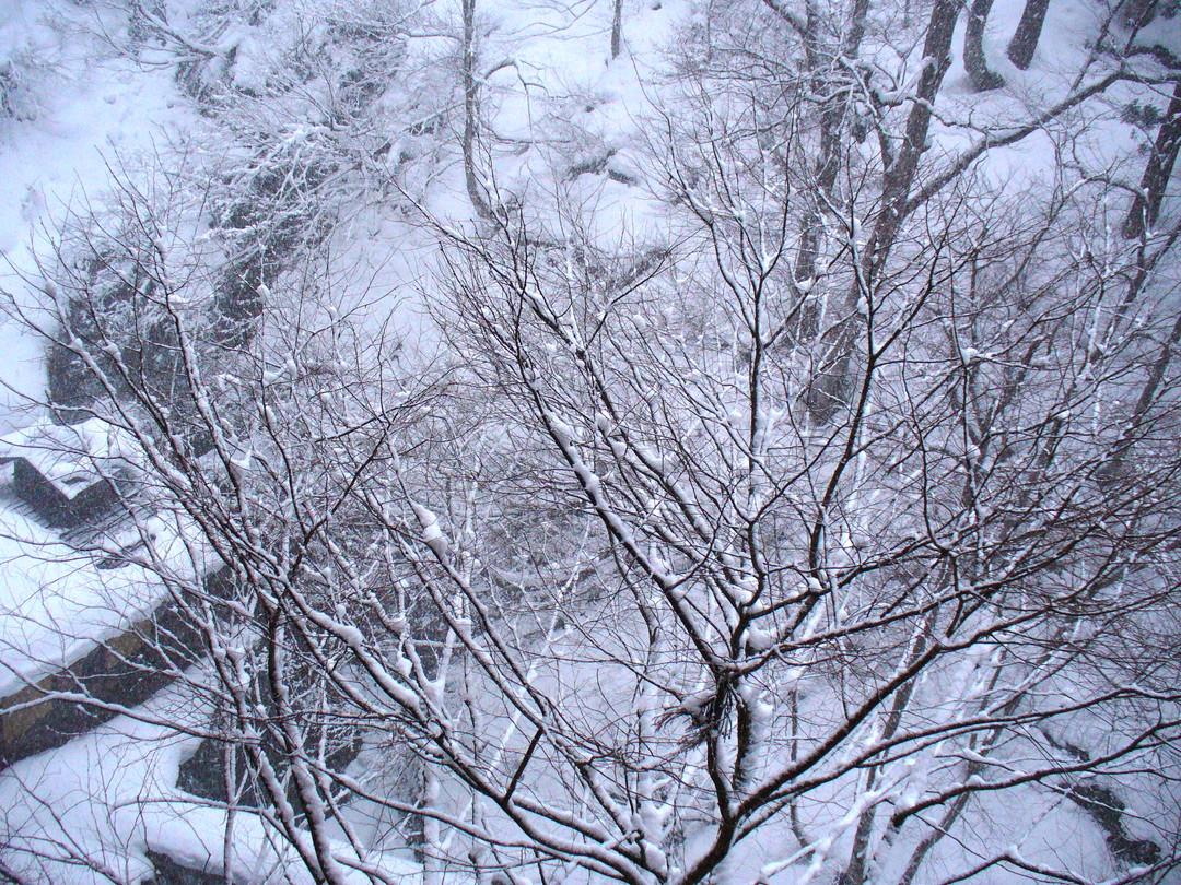 窓からは一面の雪景色……。