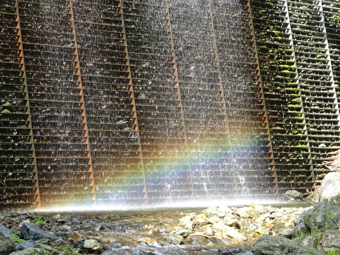 ほんとうにきれいな虹でした……♪