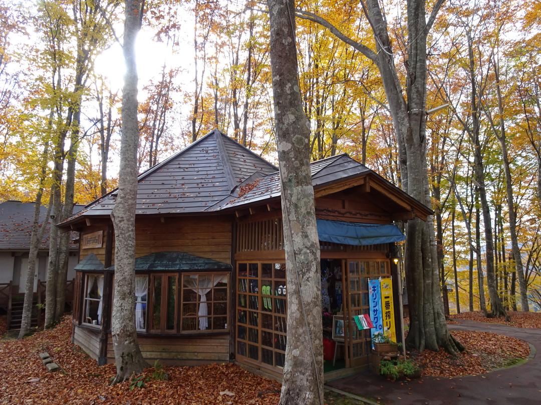 紅葉が過ぎた頃の「カフェぶなの森 Fuu」。