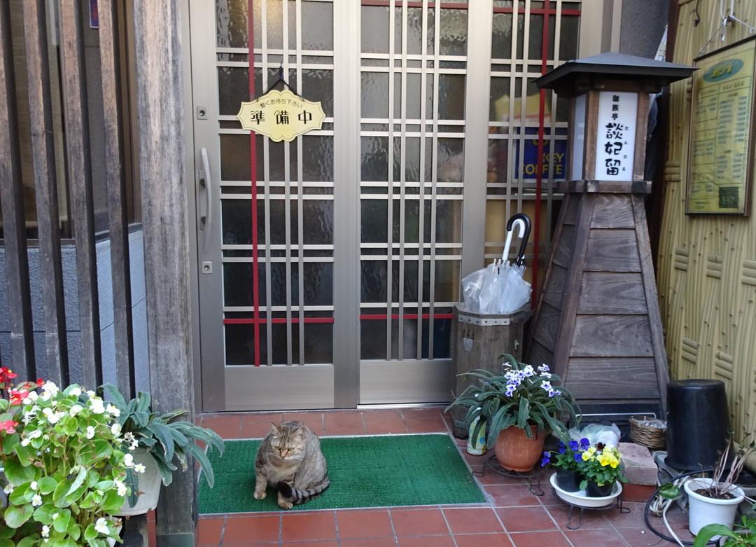 準備中の喫茶店の前に、ネコさんが……♪(飯坂温泉・福島市)