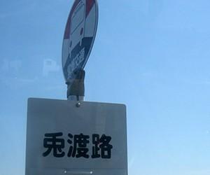 日本全国面白バス停探しの旅・その1
