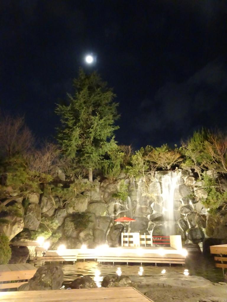 さいごの旅となった、石和温泉の宿の庭園。満月だったな……。