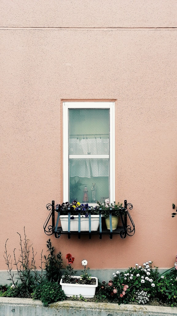 バロンが立つパン屋の窓
